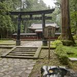Dans Nikko