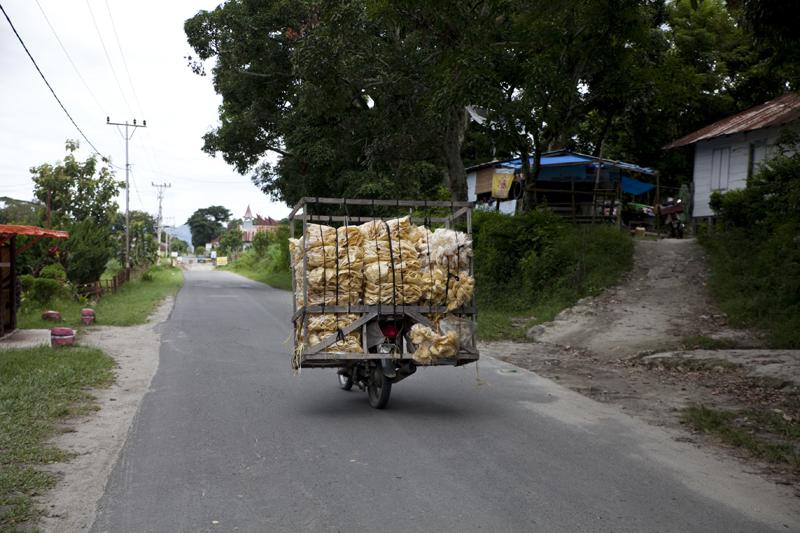 un transporteur