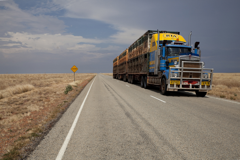 road train dans l'outback!