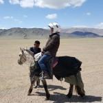 HongThinh sur un cheval mongol