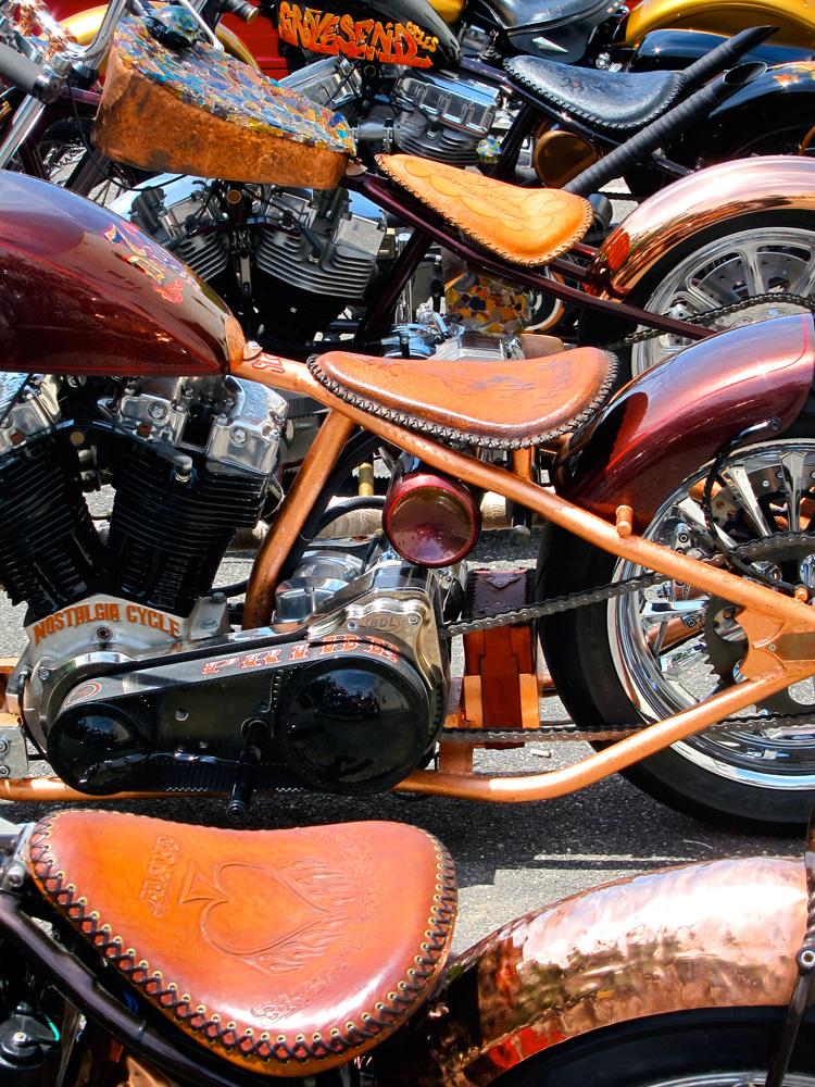 24bikes-ward-custom1